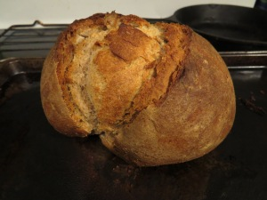 1st-oven-sourdough-8_29_2016-2