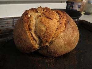 First oven sourdough