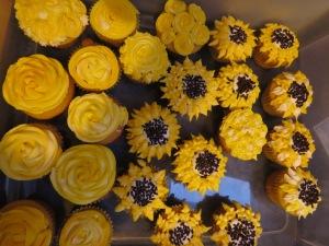 cupcakes-01092017-4